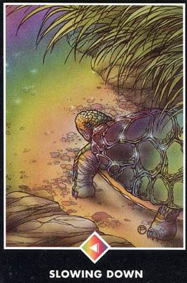 塔罗牌大师背景图片