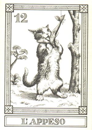 猫咪塔罗牌