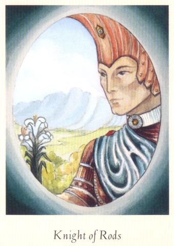 看到这套直觉塔罗牌的时候,在方形的卡片中开出了一个椭圆形的图案